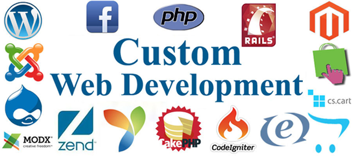 Custom-Web-Development1